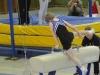 landemeisterschaften-gtm-2013-4