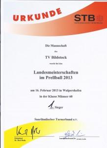 TV Bildstock Erster im Prellball 2013